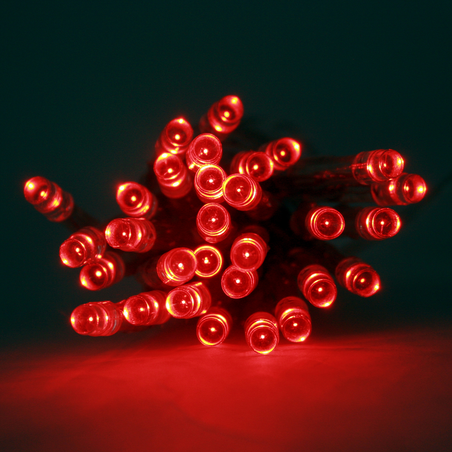 String Of Red Christmas Lights : Extra Bright Red 30 LED Battery String Lights