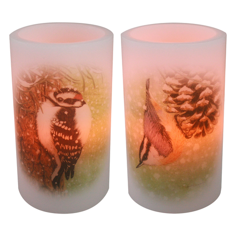 Birdwatcher Series Flameless Wax Candles, Set of 2