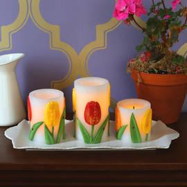 Tulip Flameless Wax Candles, Set of 3
