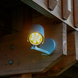 Orion Motion Sensor LED Spotlight