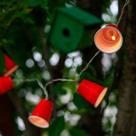 Mini Red Cup Battery String Lights, Strand of 30
