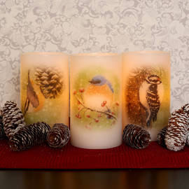 Birdwatcher Series Flameless Wax Candles, Set of 3