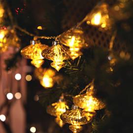 Gold Globe String Lights : Lights.com String Lights Battery String Lights Frosted Warm White Globe Battery String ...