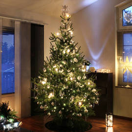 600 LED Christmas String Lights