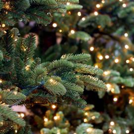 1200 LED Christmas String Lights