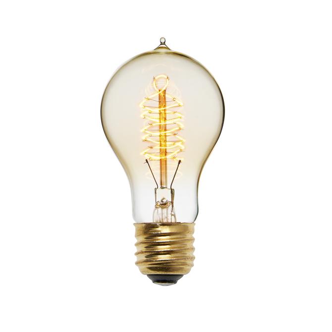 Crown Heights A19 Vintage Edison Bulbs, 40W (E26) - Single
