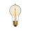 Crown Heights A19 Vintage Edison Bulbs, 40W (E26) - Single