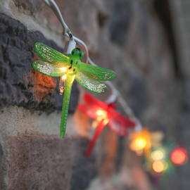 Multicolor Dragonfly Plug-in String Lights, Strand of 10