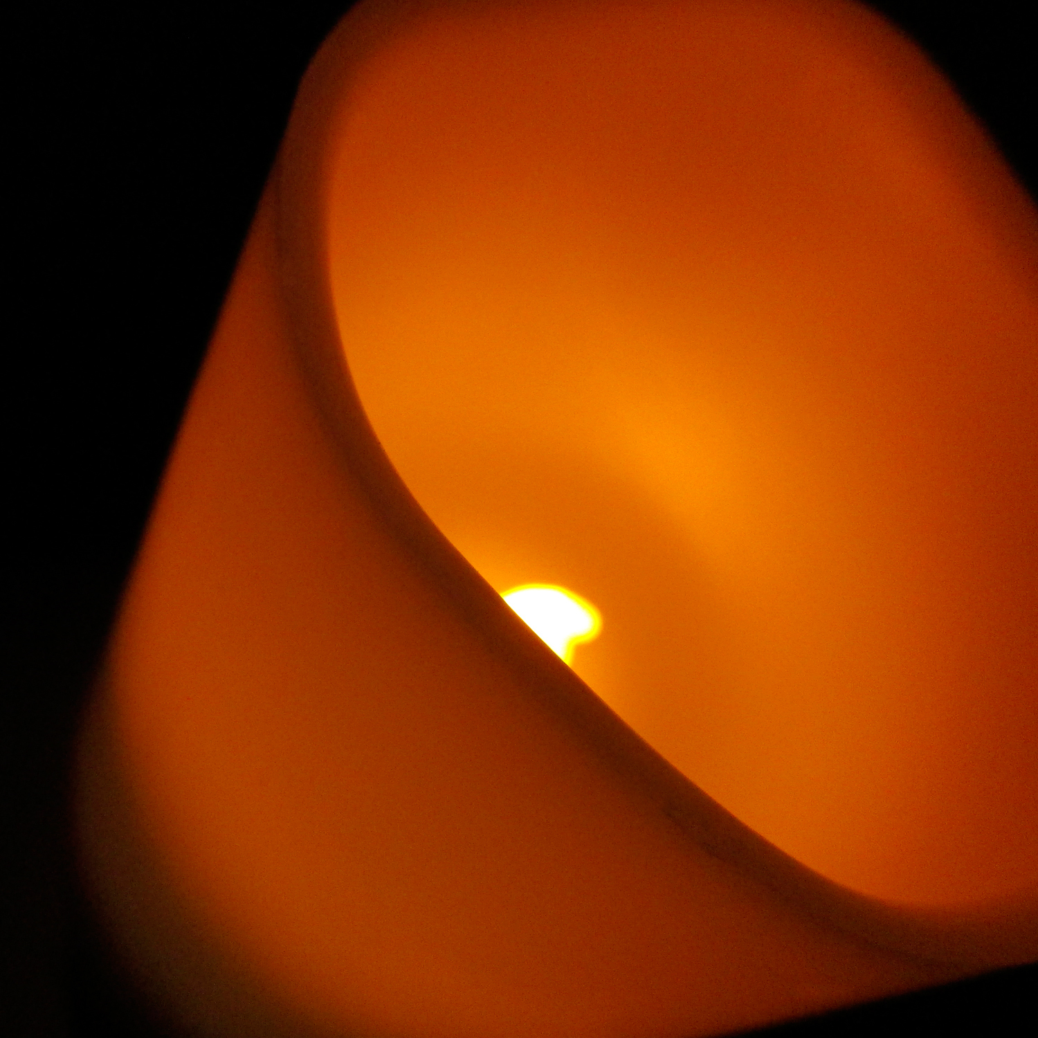Electric Candle String Lights : Events, Promotions and Inspirations from Lights.com