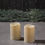 "Idlewild Outdoor 3""x4.5"" Candles, Set of 2"
