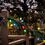 Holly Multi-Color 50LED C7 Indoor/Outdoor String Lights - 3xC Battery Box